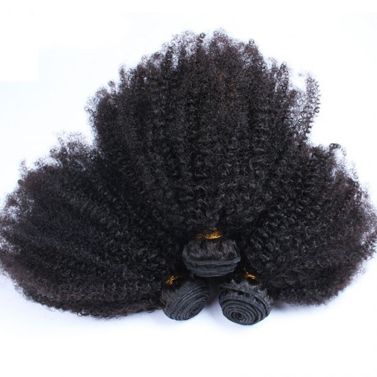 Afro Kinky Curly Hair Bundles Deal with Lace Frontal 13x4 Closure